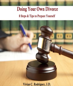 doing your own divorce ebook